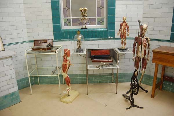Anatomical Models in the Old Operating Theatre